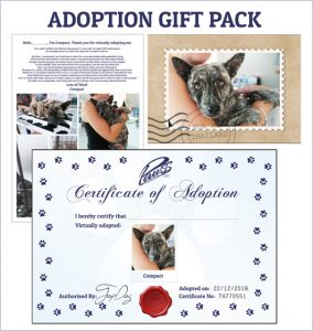 Buy Adoption Gift Pack